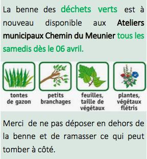 Dechets verts 1