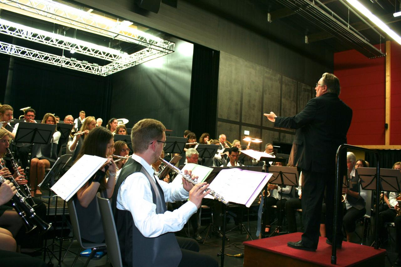 Ensemble orchestral de Hem à Willems juin 2015