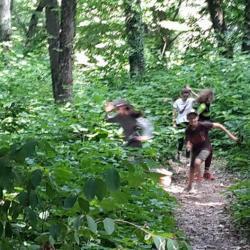 jeux Sagamore en forêt