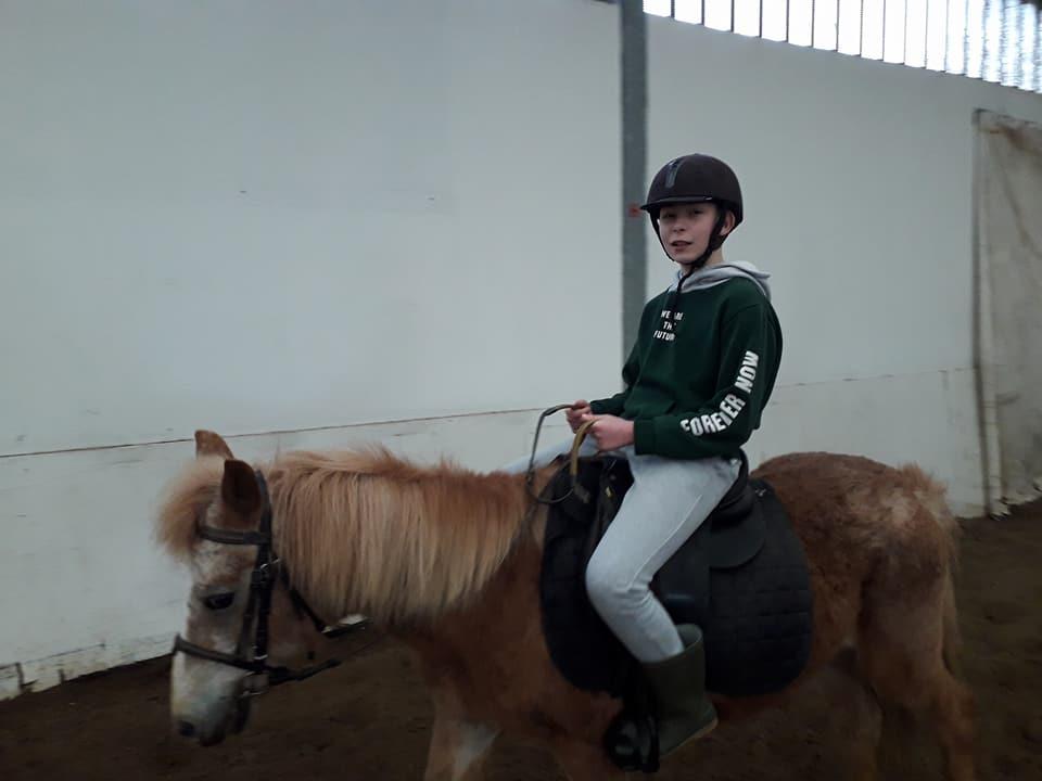 Sortie équitation à aux écuries de Willems
